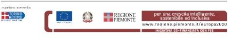 Logo_FSE_2